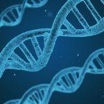 ゲノム編集・クリスパーcrisprとは?わかりやすい動画で簡単な原理や倫理的問題を解説