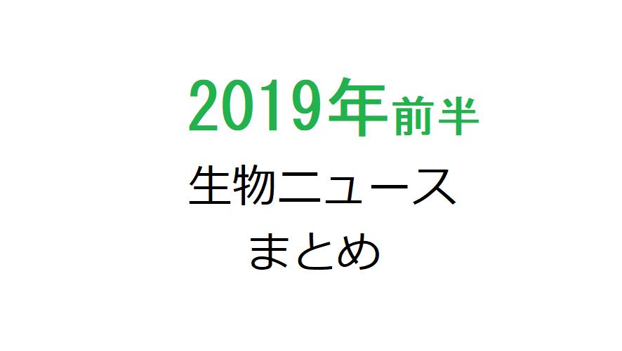 2019年前半に話題になった生物学などの最新論文ニュースまとめ12選